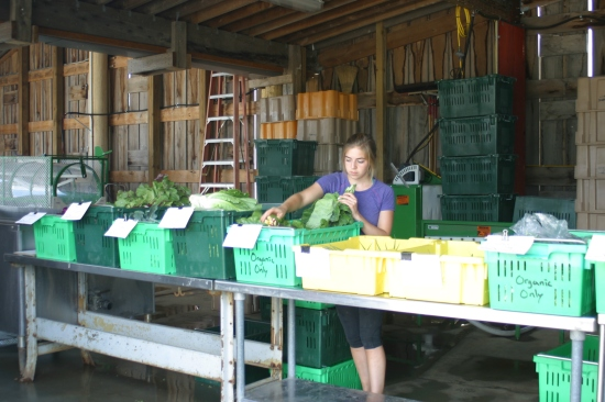 Emma setting up for farm pick-up