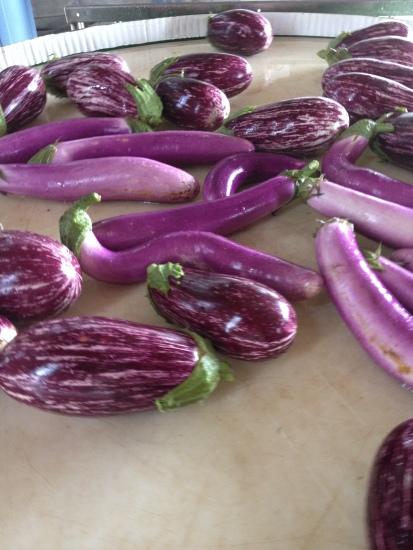Asian Eggplants
