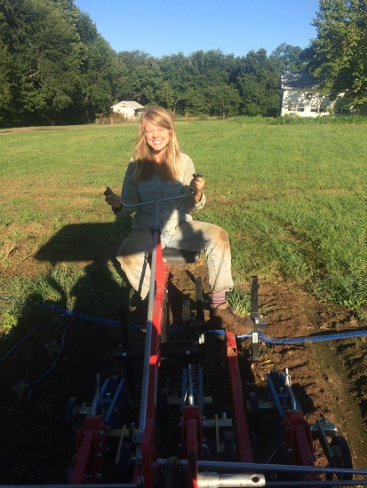 Savannah on the fingerweeder to cultivate some fall fields!